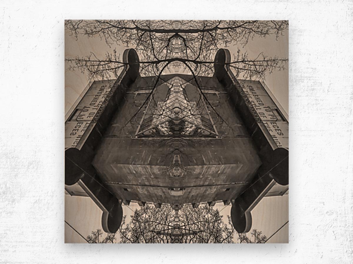 Vienna - Aquarium Wood print