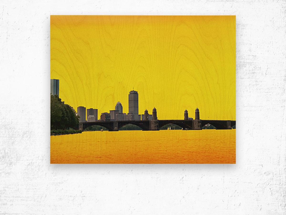 Hot Day In Boston Wood print