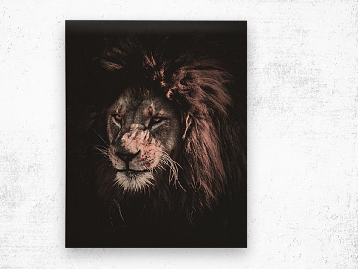 lion painting Wood print