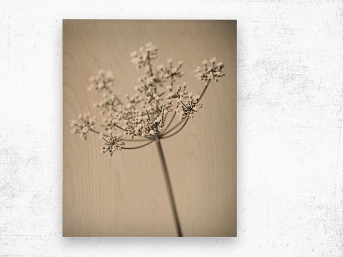 Vintage Flowers Wood print