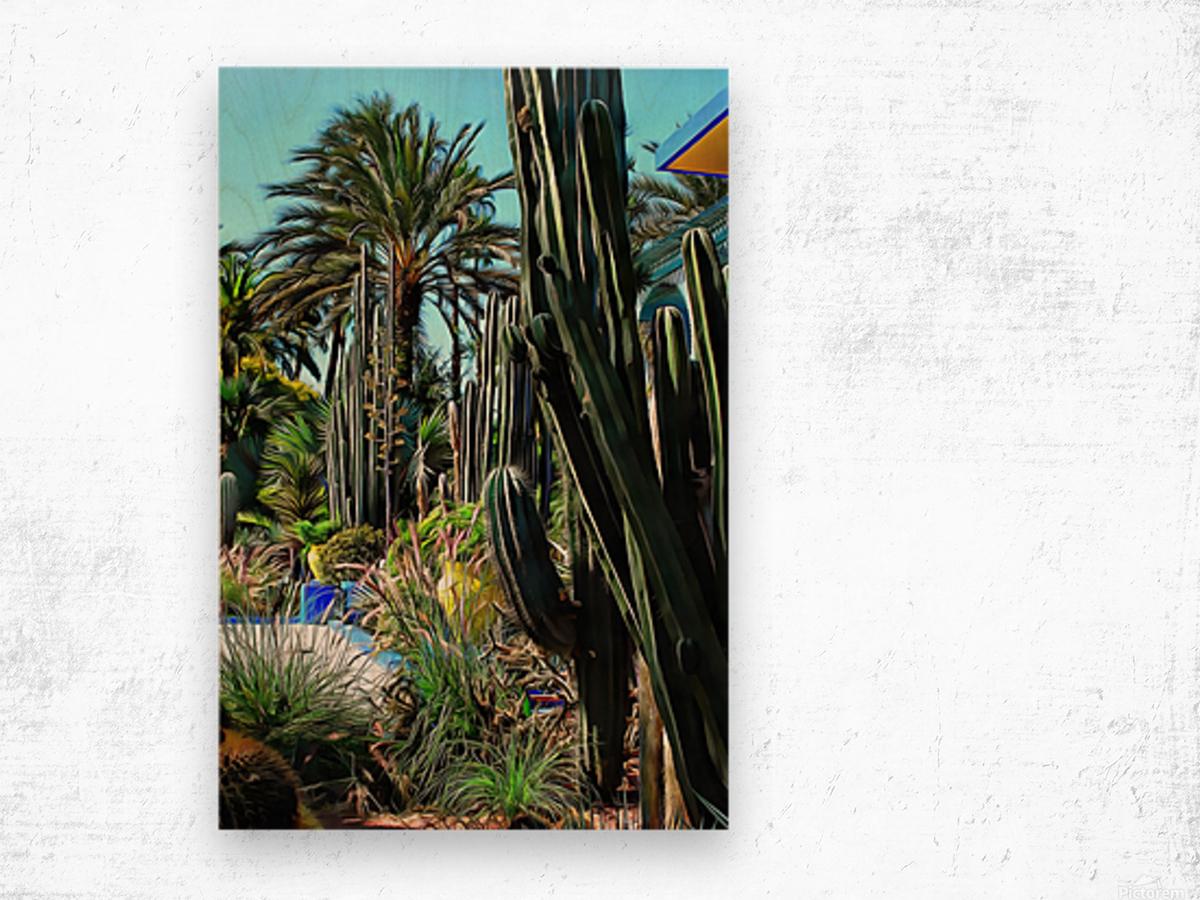Giant Cacti Jardin Majorelle Marrakech Wood print