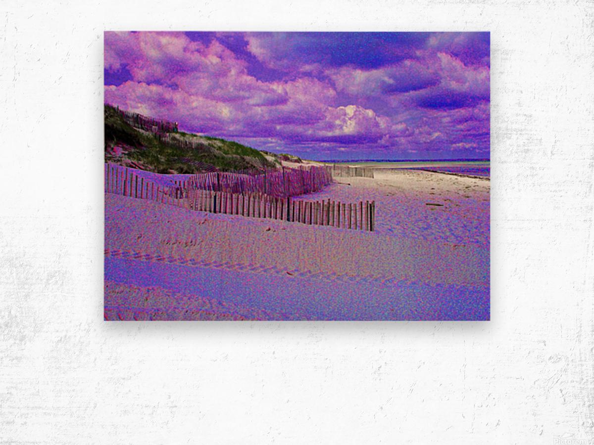 Nauset Beach Cape Cod Massachusetts Wood print