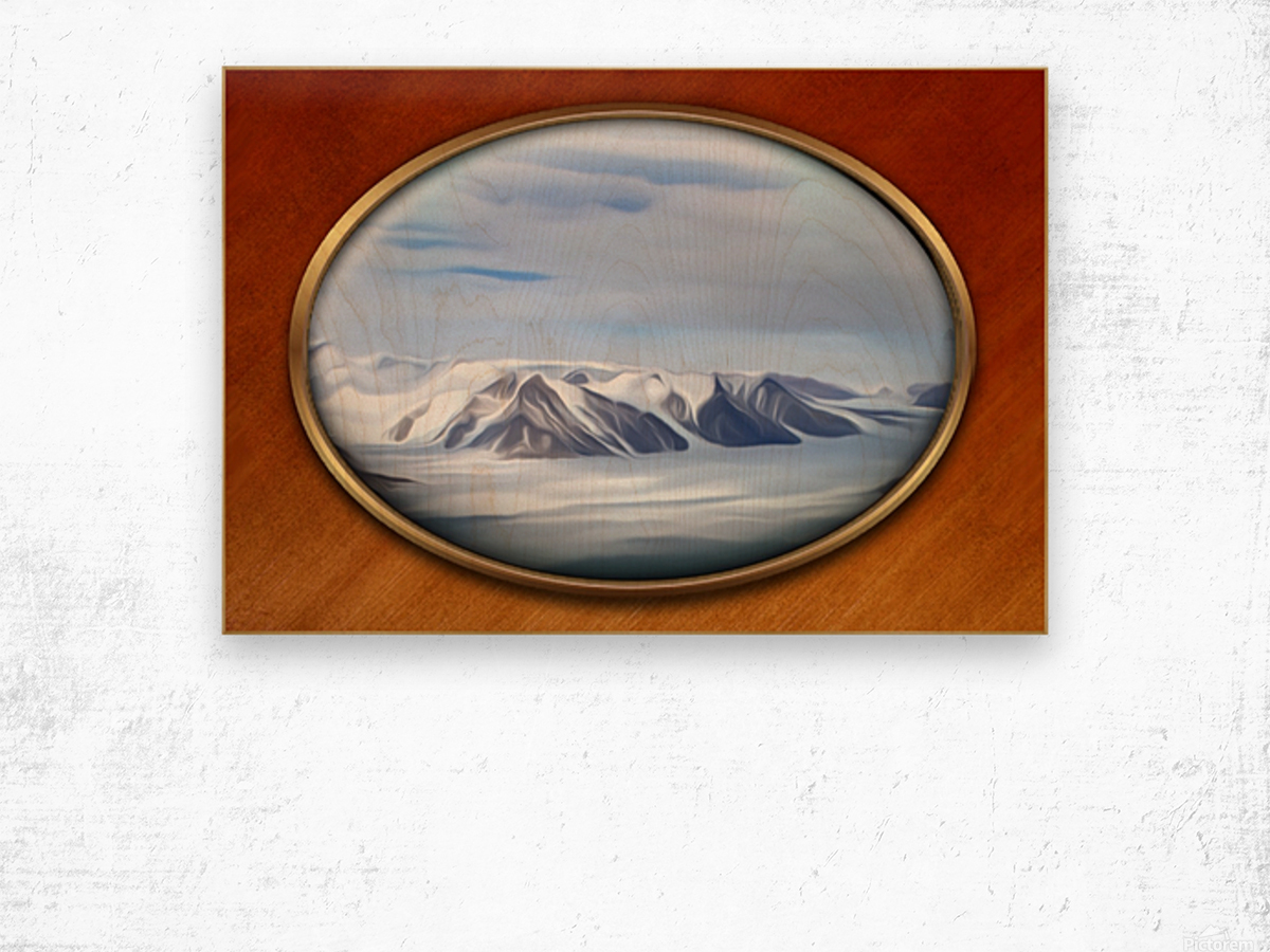 Landscape 14 Wood print
