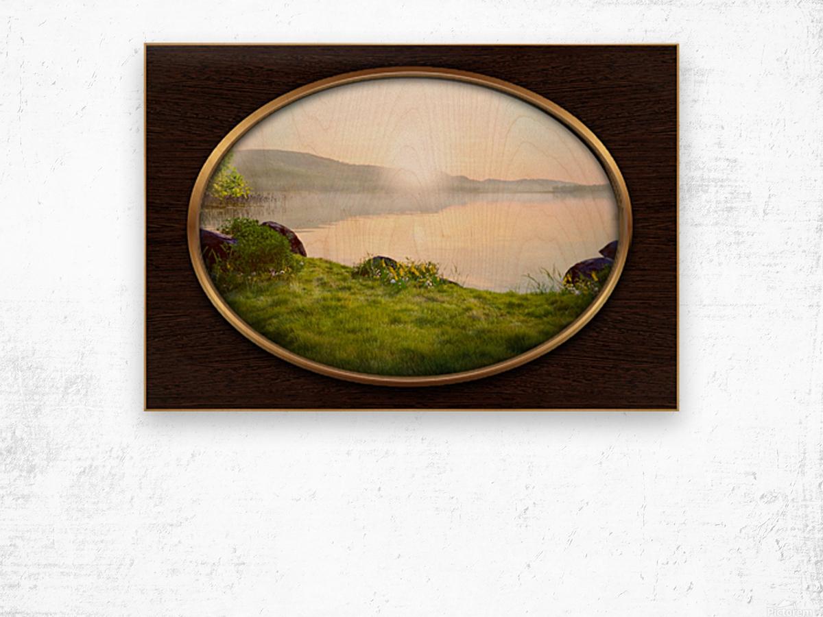 Landscape 13 Wood print