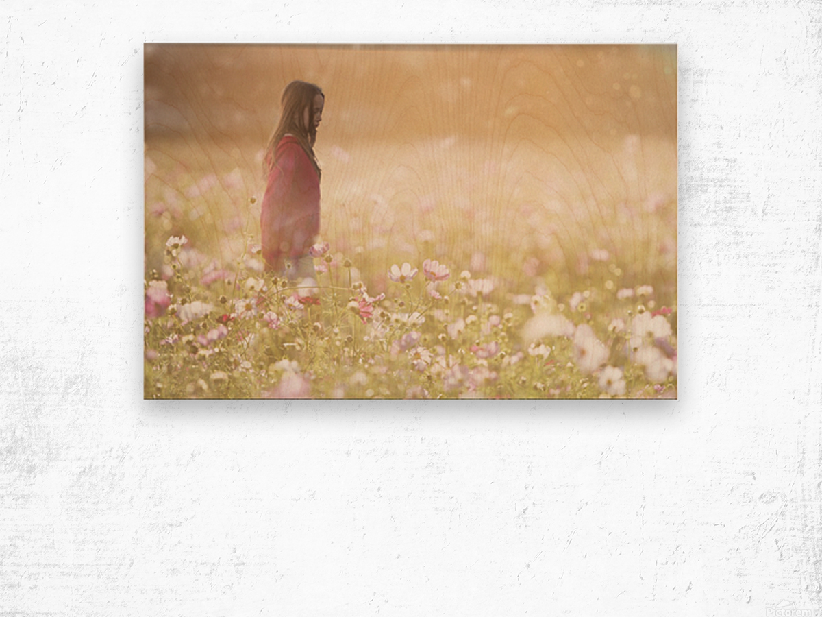 Peaceful Meadow Utah United States Wood print