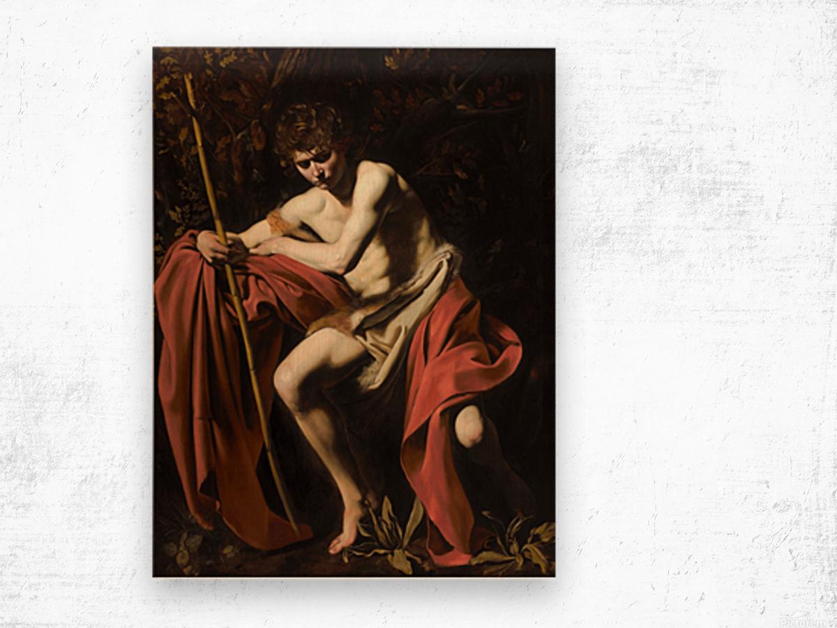 Saint John the Baptist in the wilderness Wood print