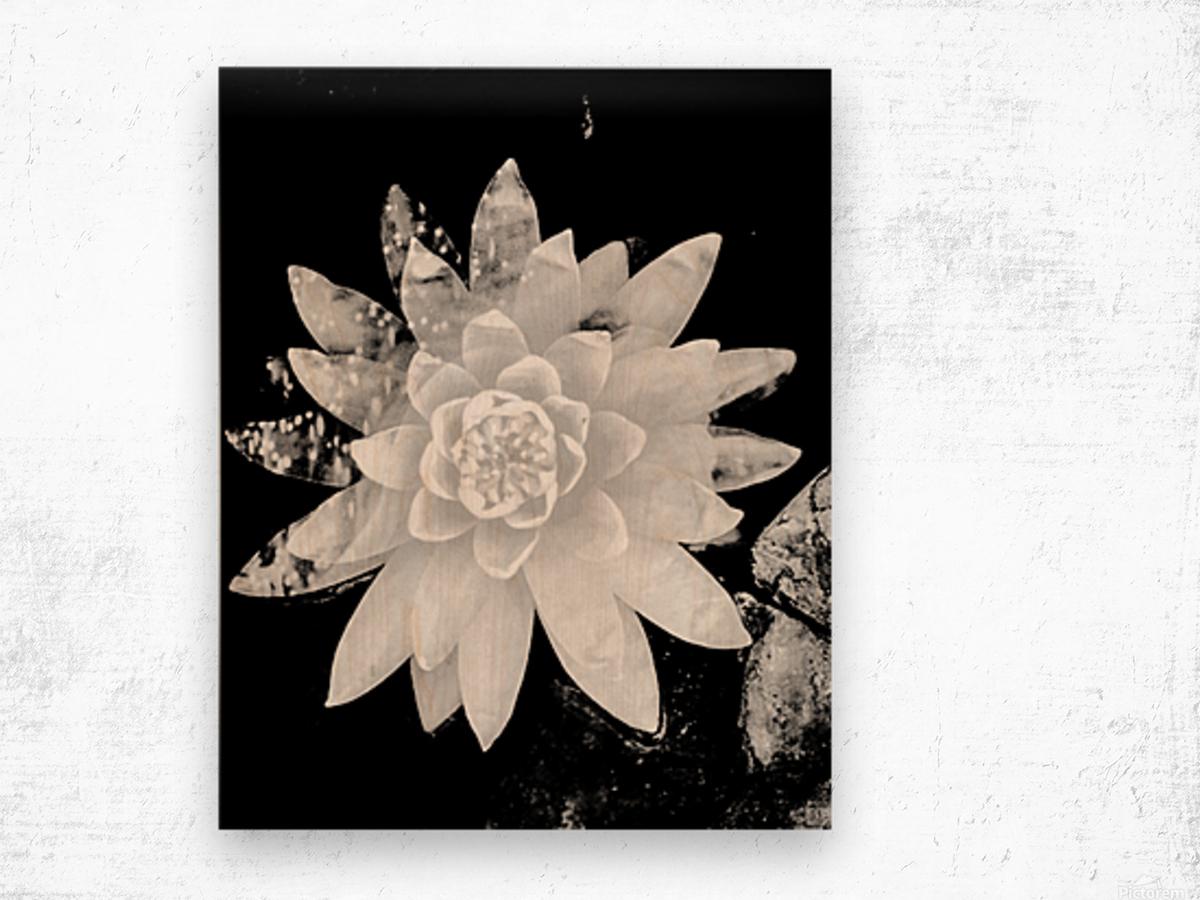 White Is the love  Impression sur bois