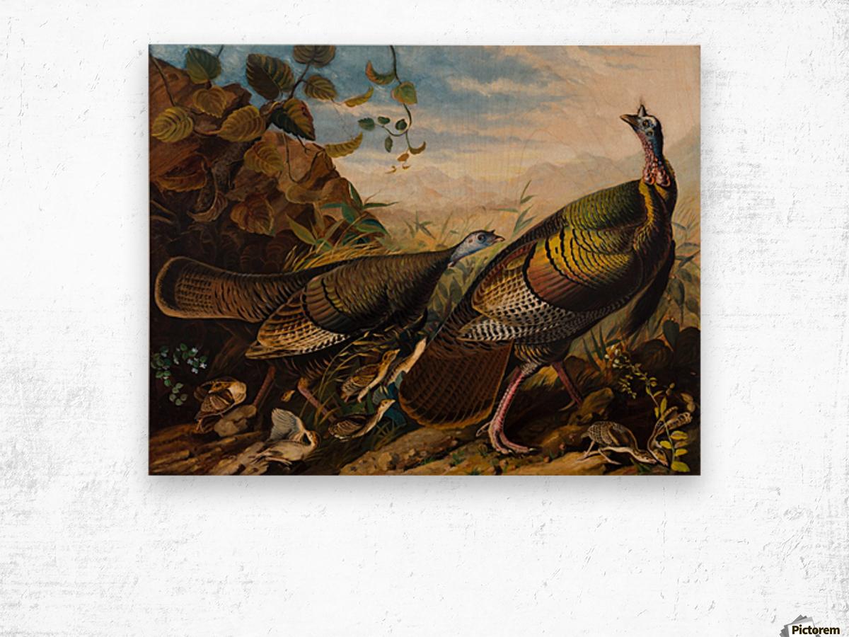 Wild Turkeys Wood print