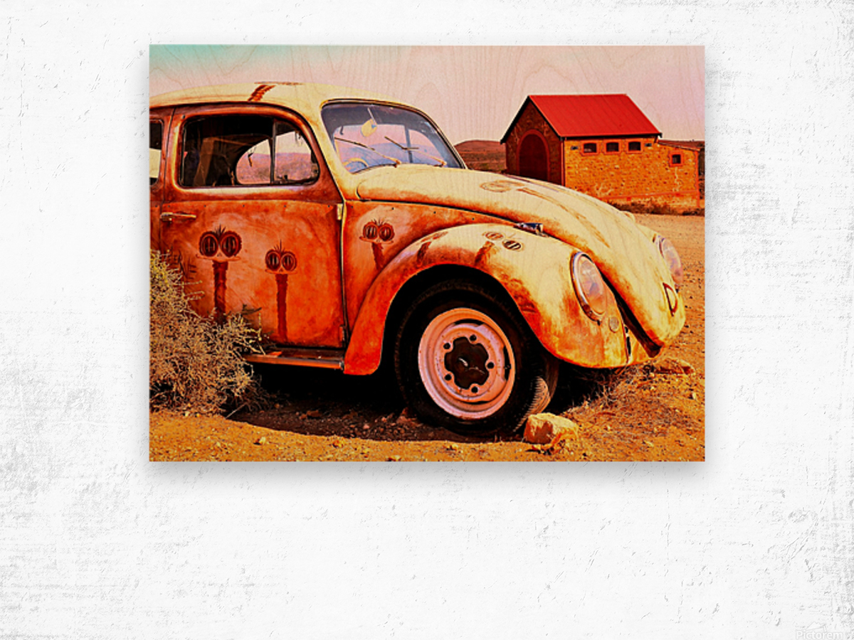 Quirky Sights of the Outback 5 Wood print