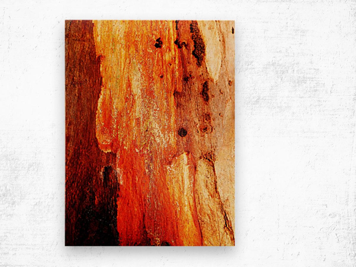 Murray Gum Tree Bark 2 Wood print