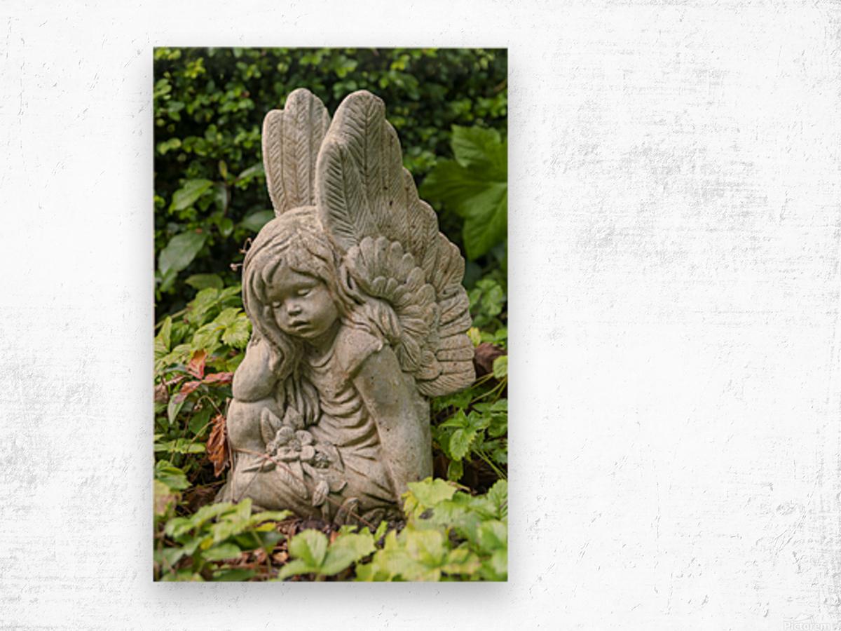 IMGP4937 Wood print