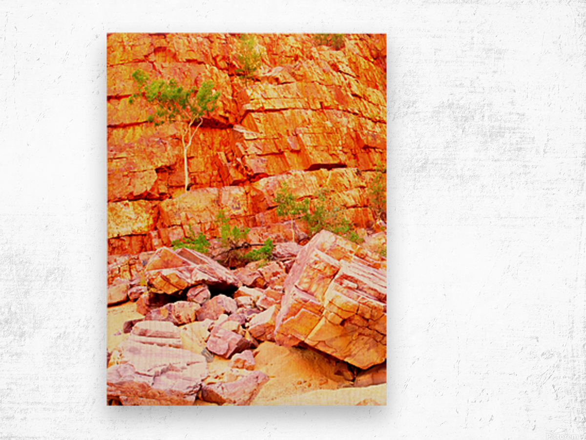 Surviving - Ormiston Gorge Wood print