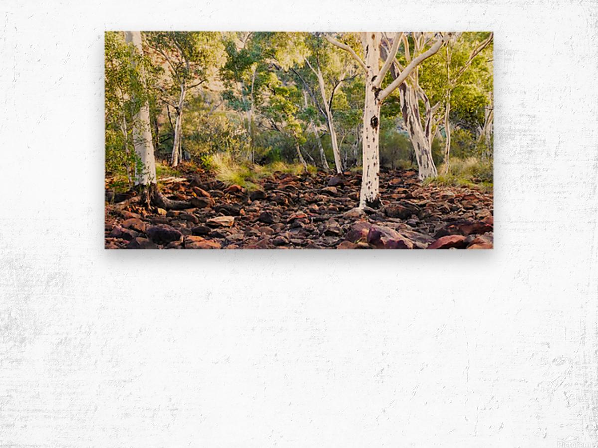 Sunrise on Kings Creek Wood print