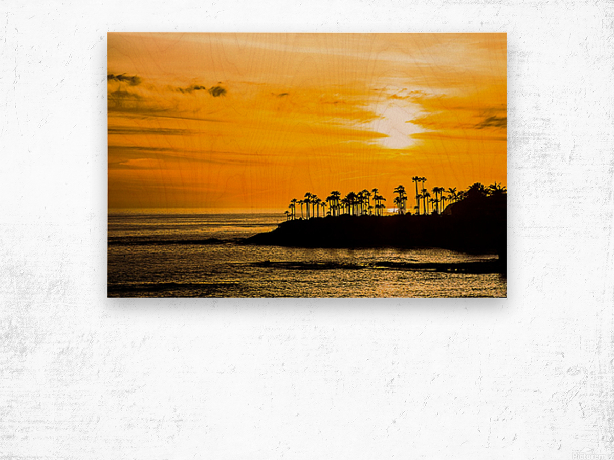California Dreamin Wood print
