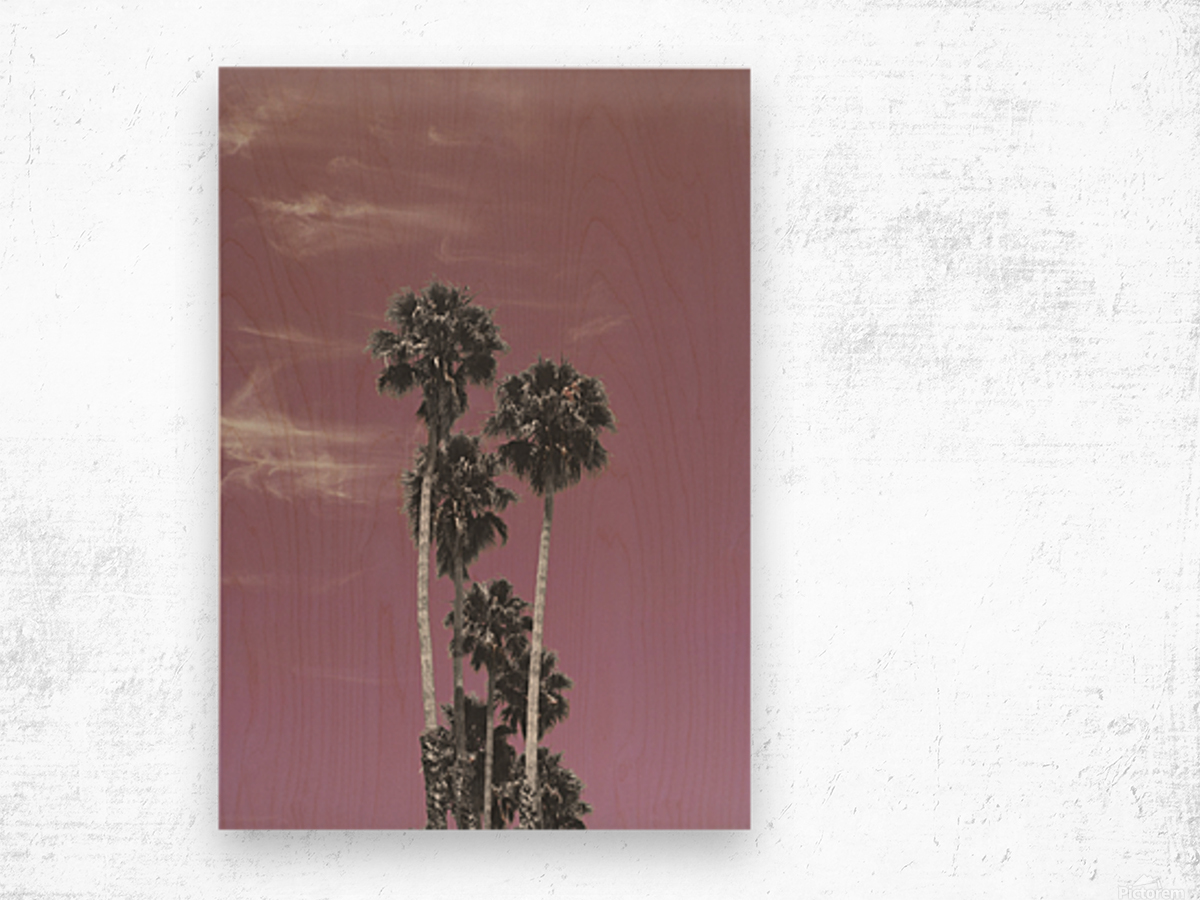 Palm trees in summer Wood print