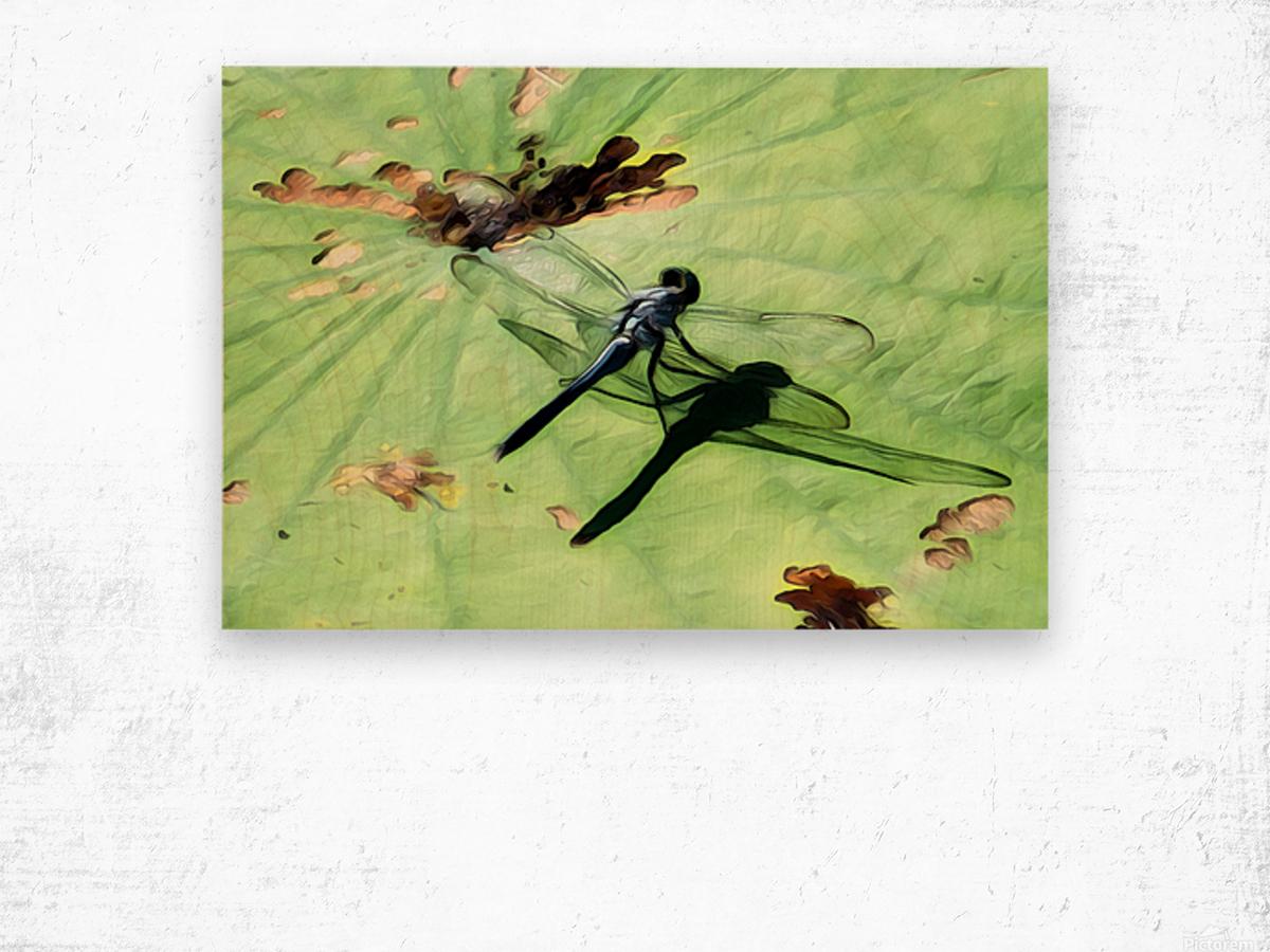 Dragon Fly Wood print