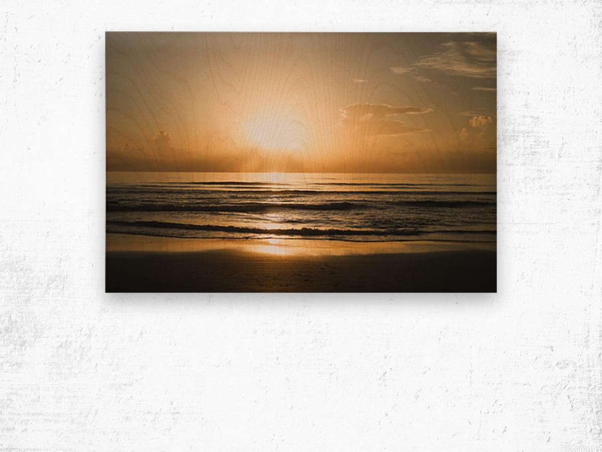 Golden Soul Wood print