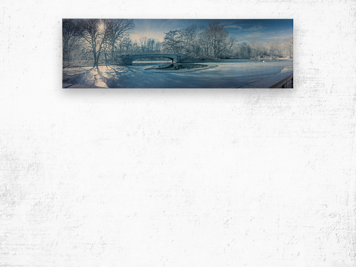 A winter day in the Prospect Park Wood print