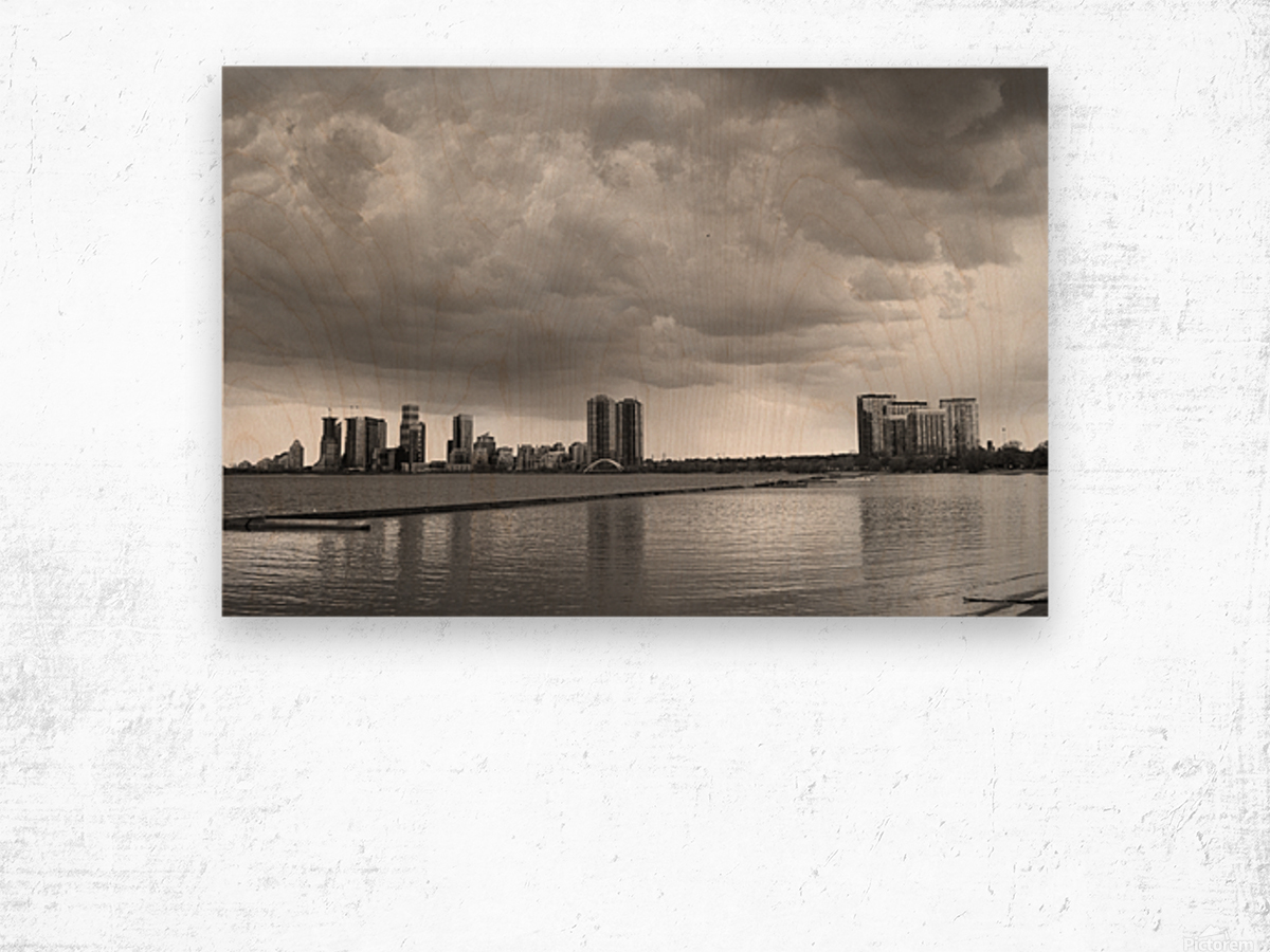 City at Ontario Lake B&W Wood print
