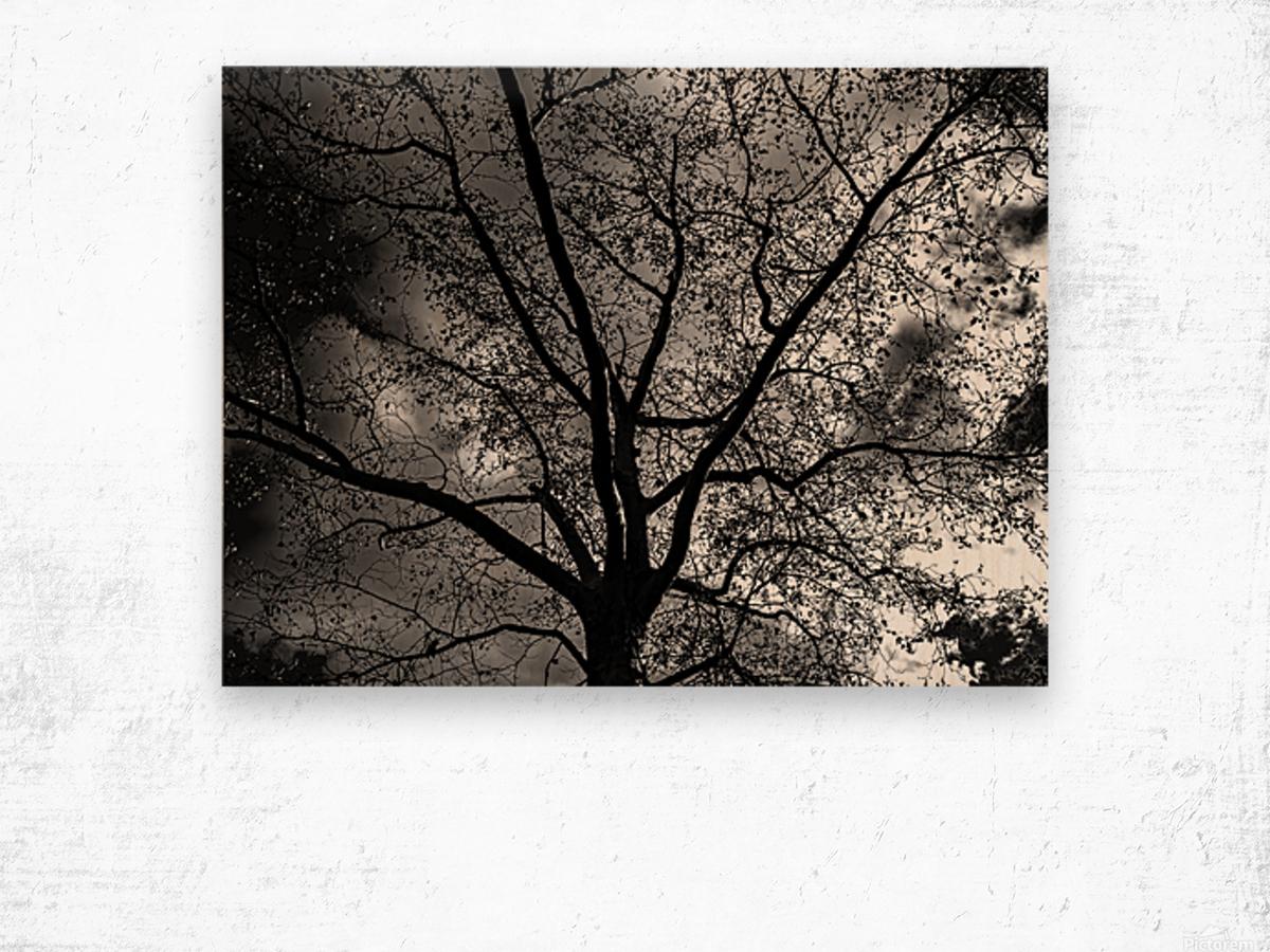 _1150920_1572477007.8786 Wood print