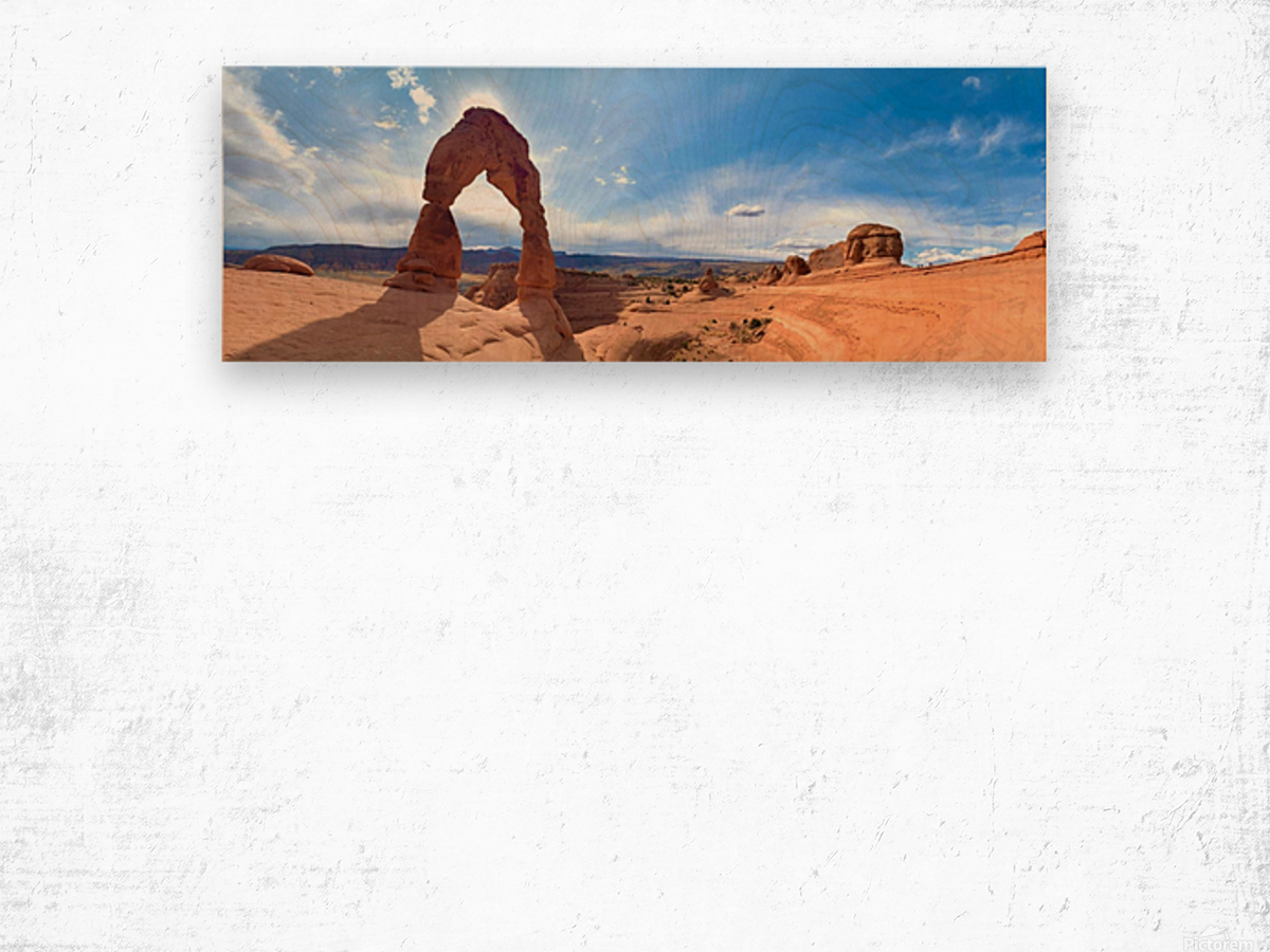 Delicate Arch - Arches National Park Wood print