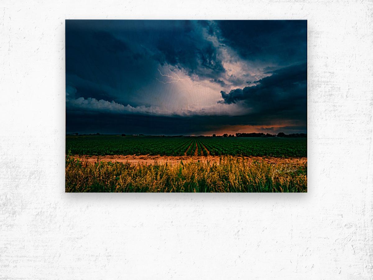 Prairie Lightning Wood print