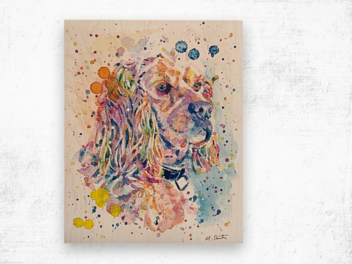 Cocker Spaniel Dog - Portrait of Charlie Wood print