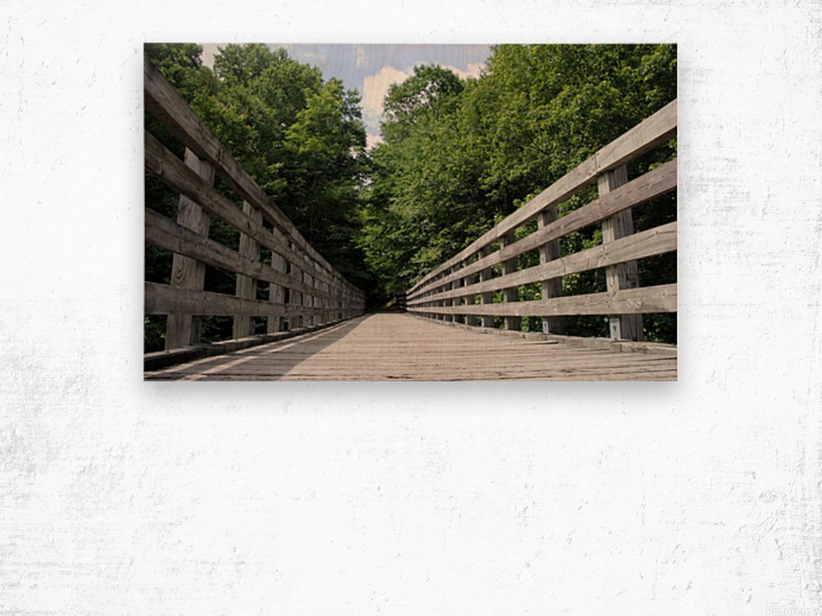 Rail to Trail Wood print