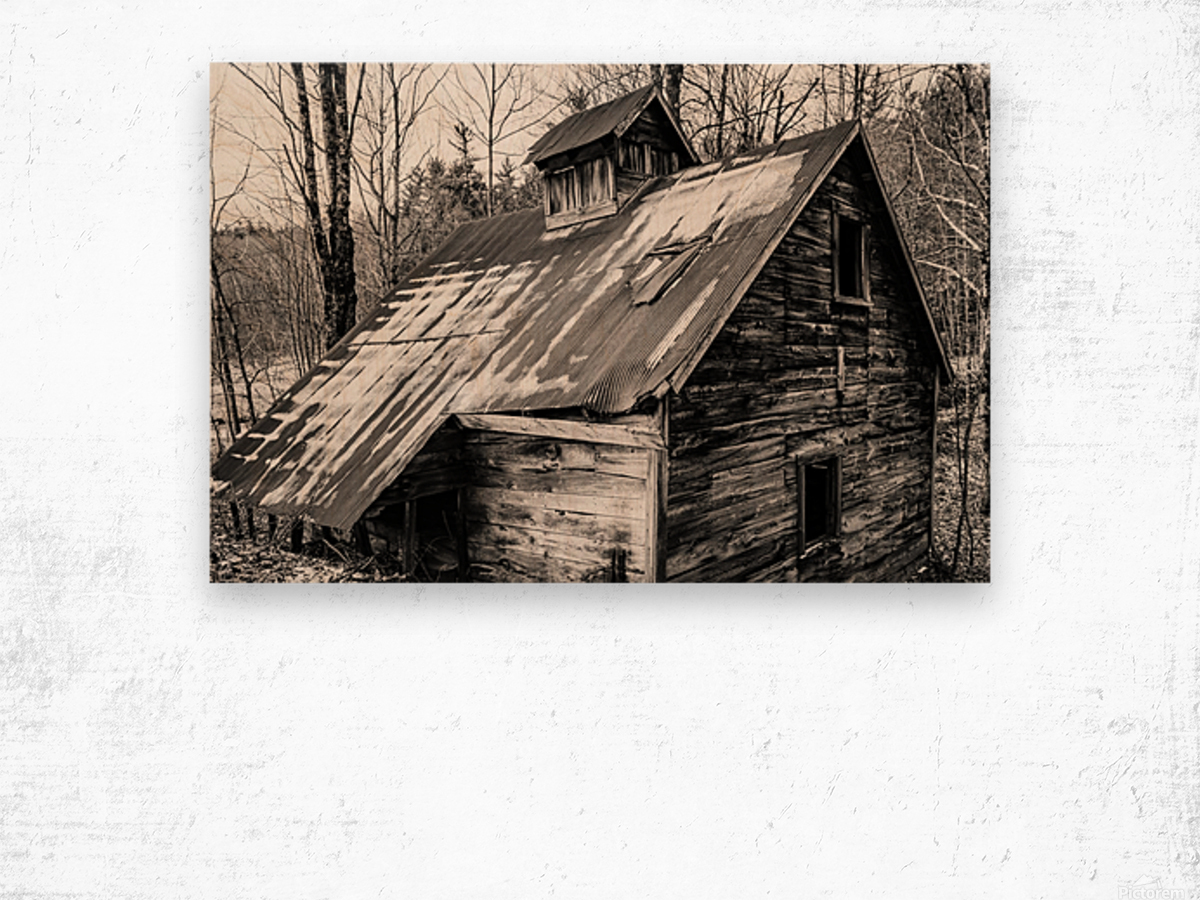 Abandoned Shack 6 Wood print