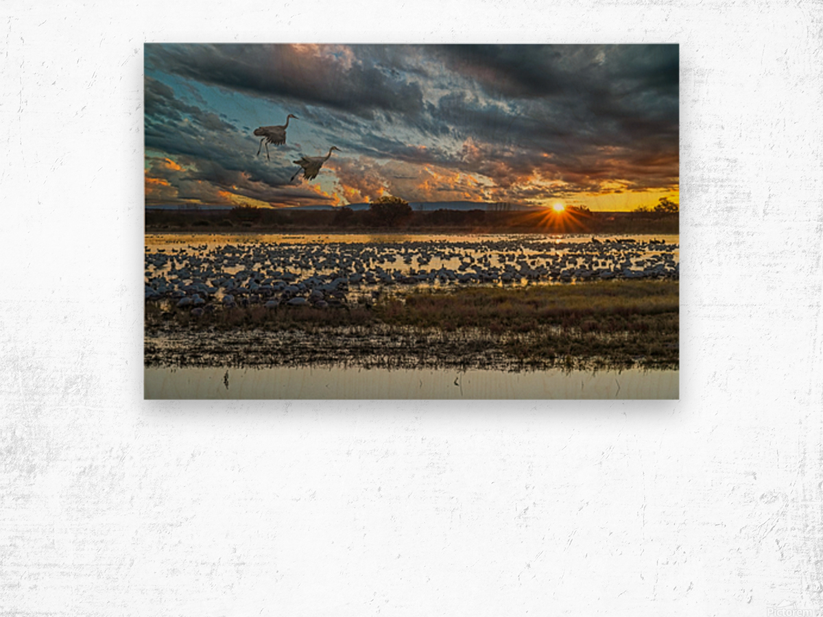 Sunrise at the Bosque Wood print