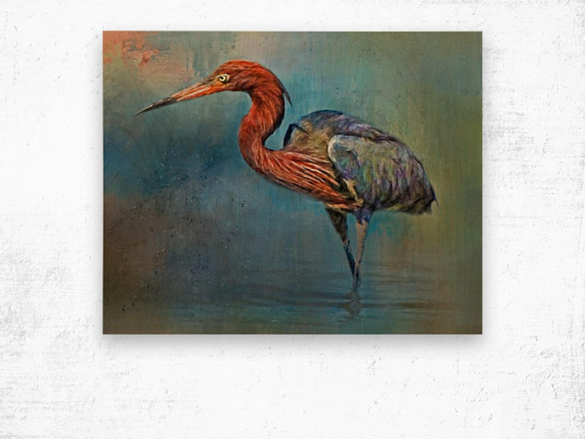 Painted Reddish Egret Wood print