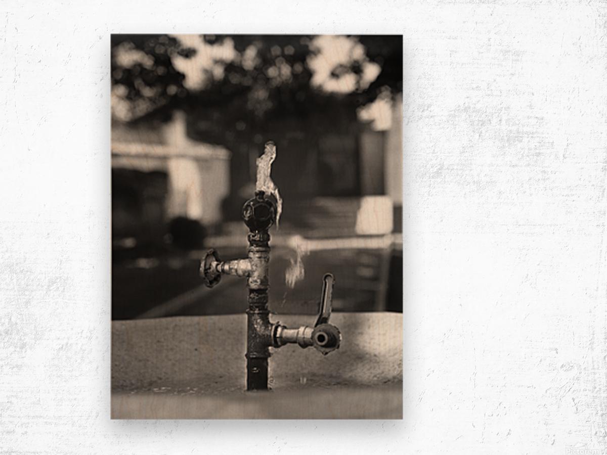 City Park Faucet Wood print