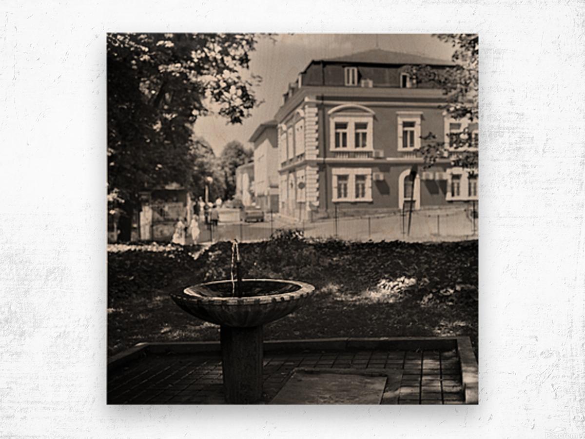City Faucet Wood print