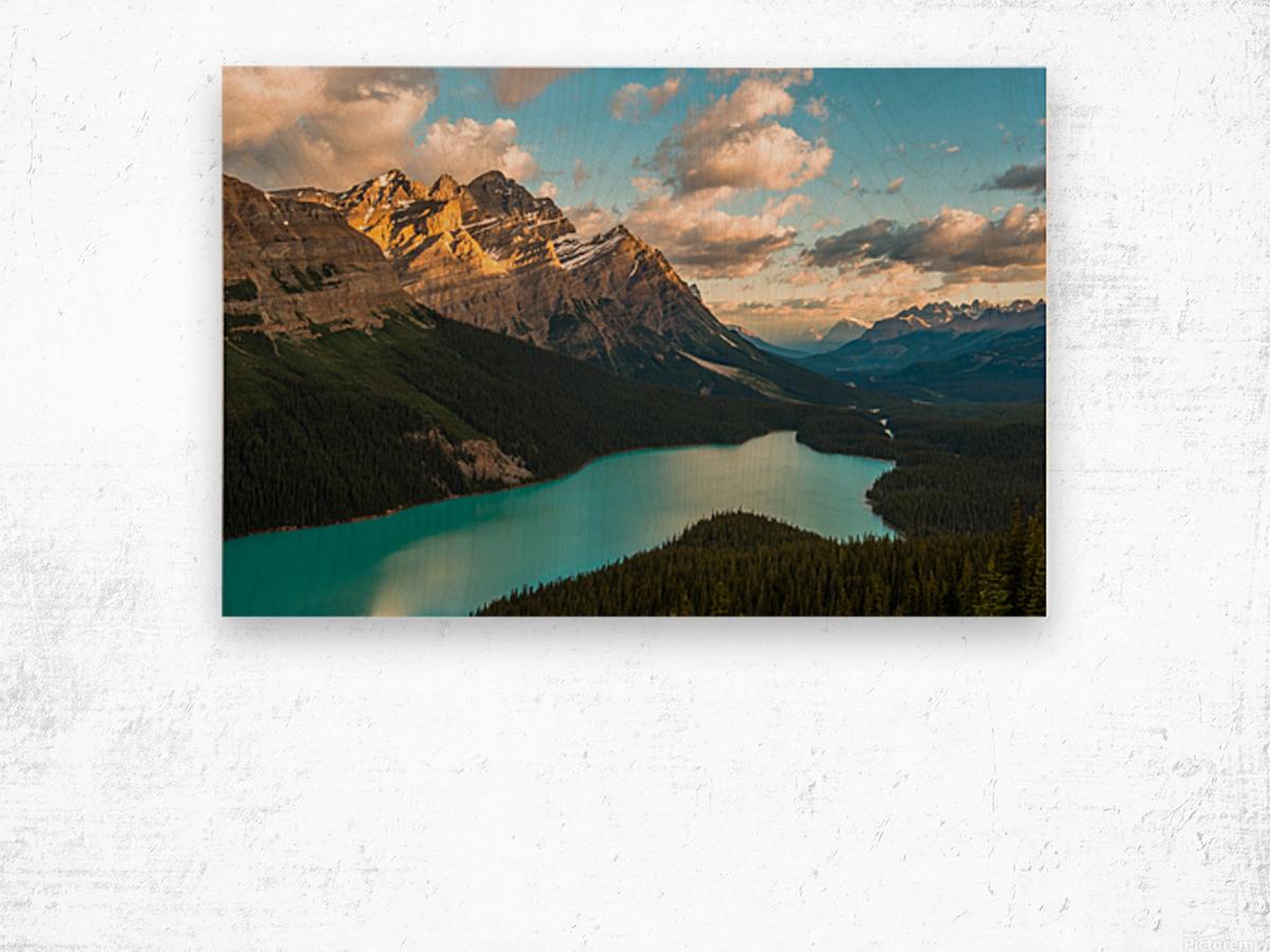 Peyto Lake 2 Wood print