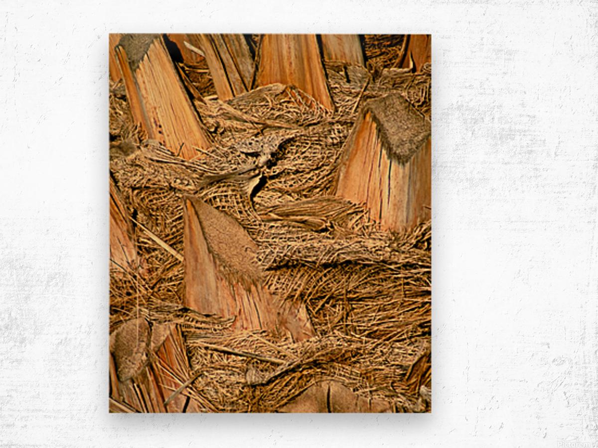 Jagged Gold Wood print