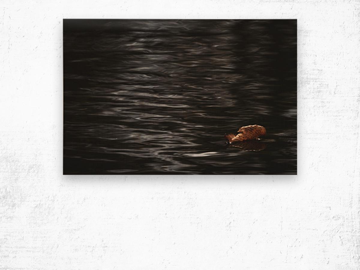 Aqueous Autumn  Wood print