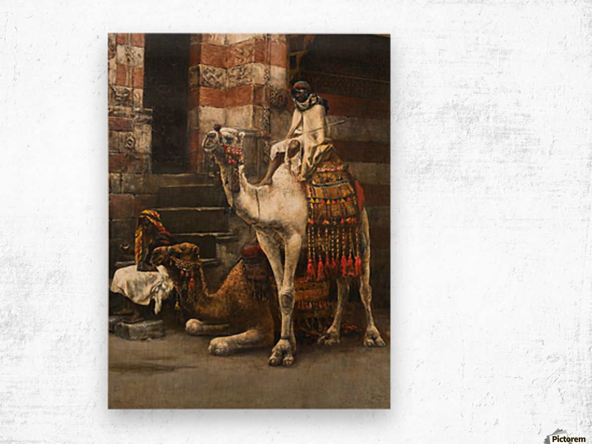 Camels on Cairo street Wood print