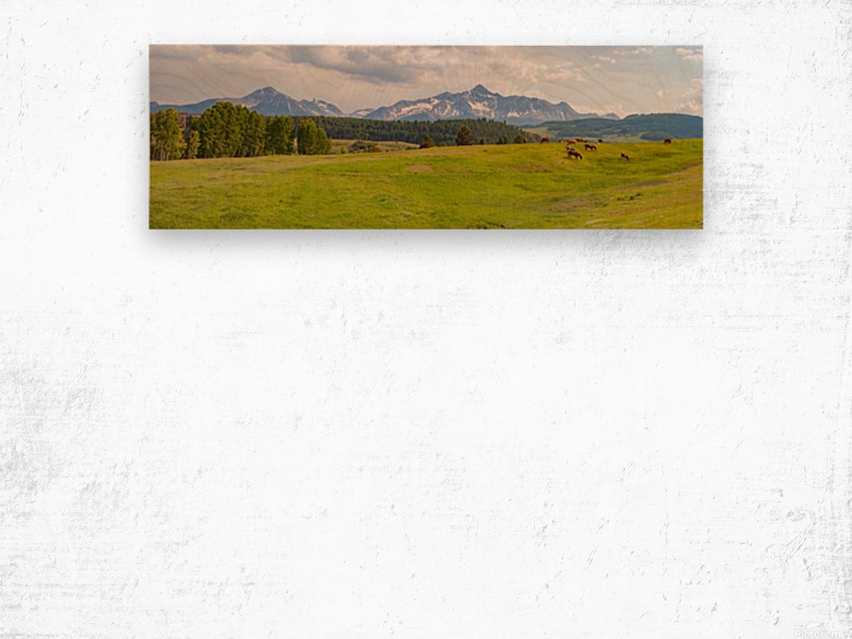 Wilson Peak with Horses Wood print