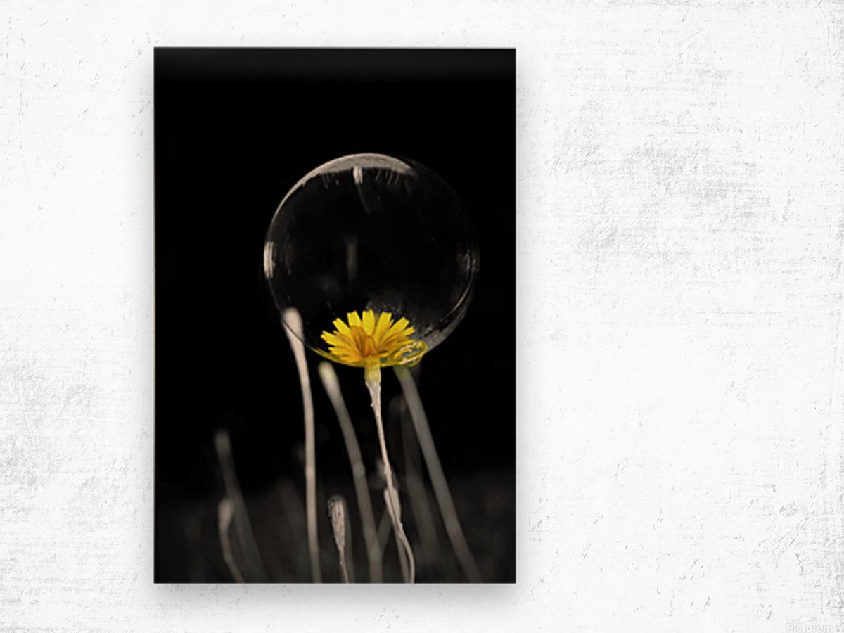 Passe present Wood print