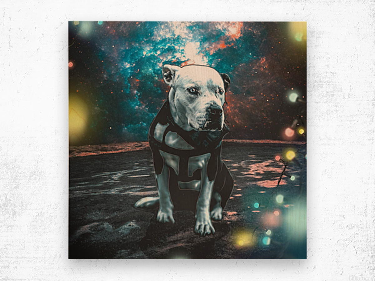 cosmos background space dog Wood print