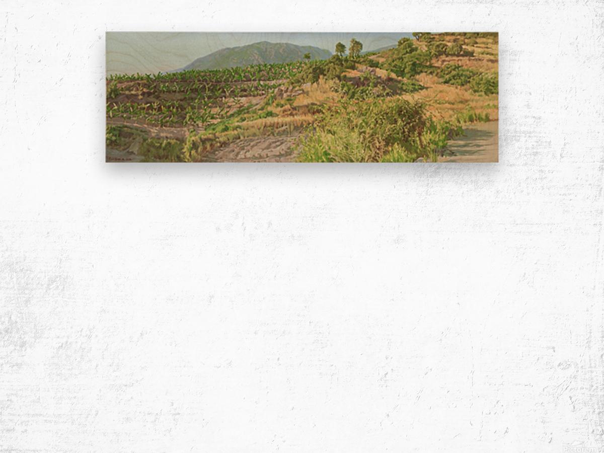 Foothills_In_Turkey Wood print