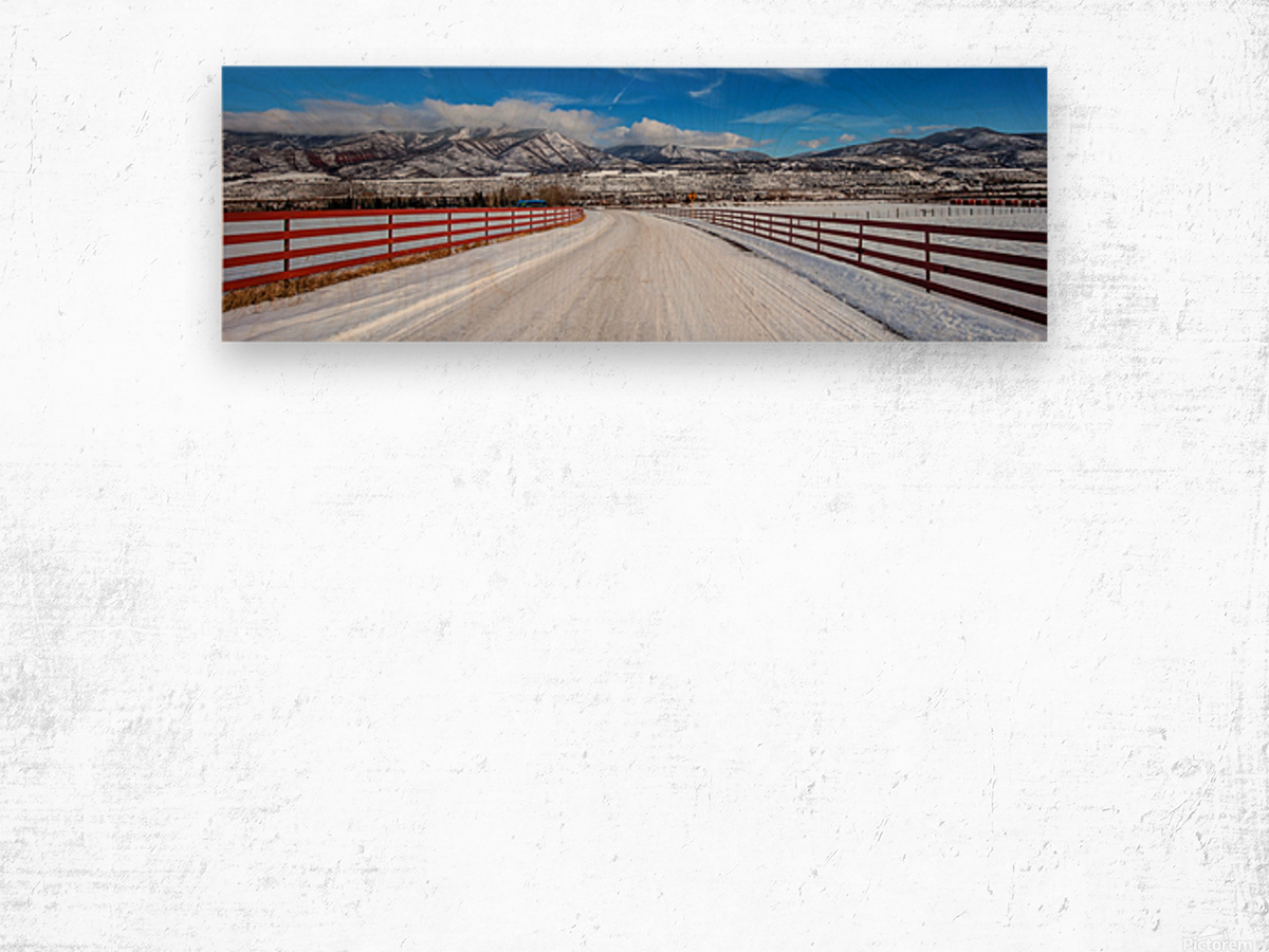 White shroud Wood print