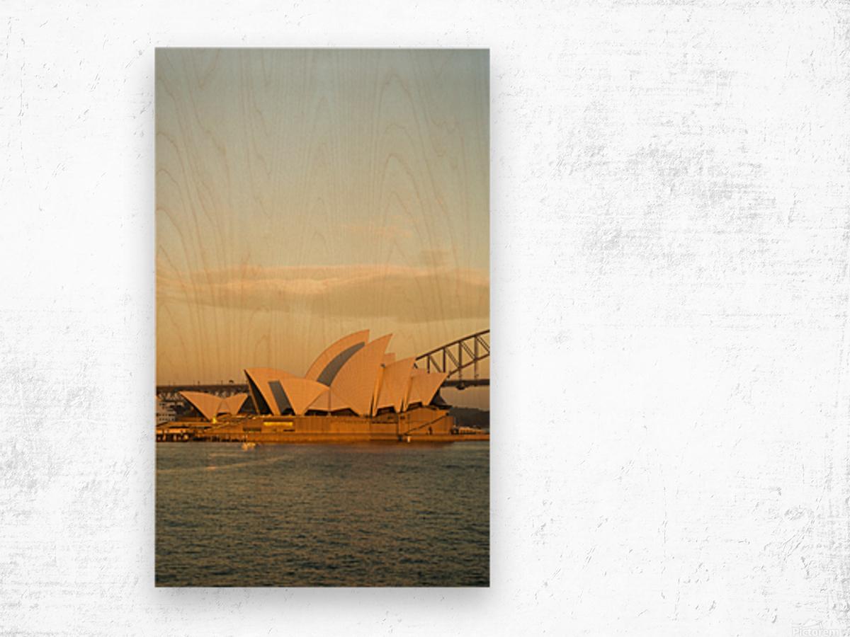Sydney Opera House in the pre dawn light Wood print