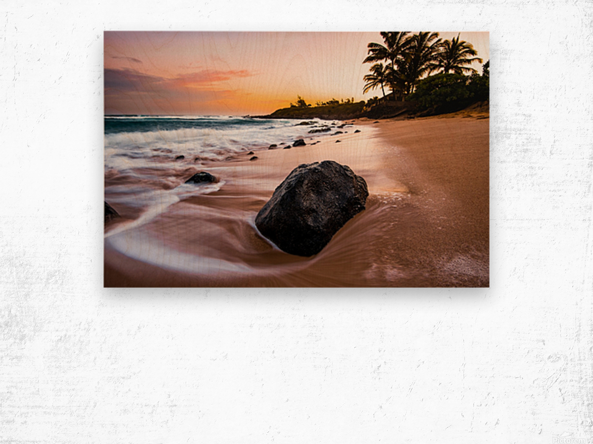 Smooth Shore Wood print