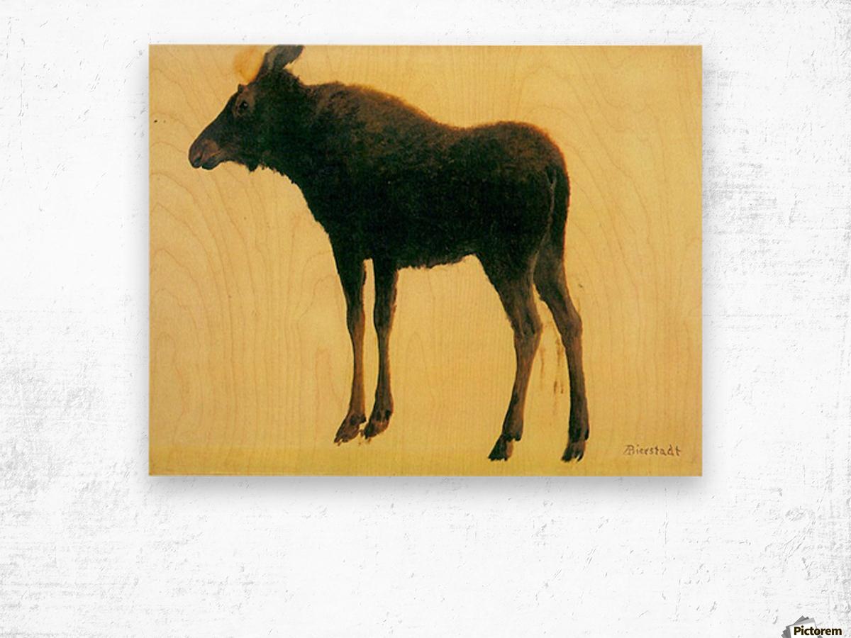 Elk by Bierstadt Wood print