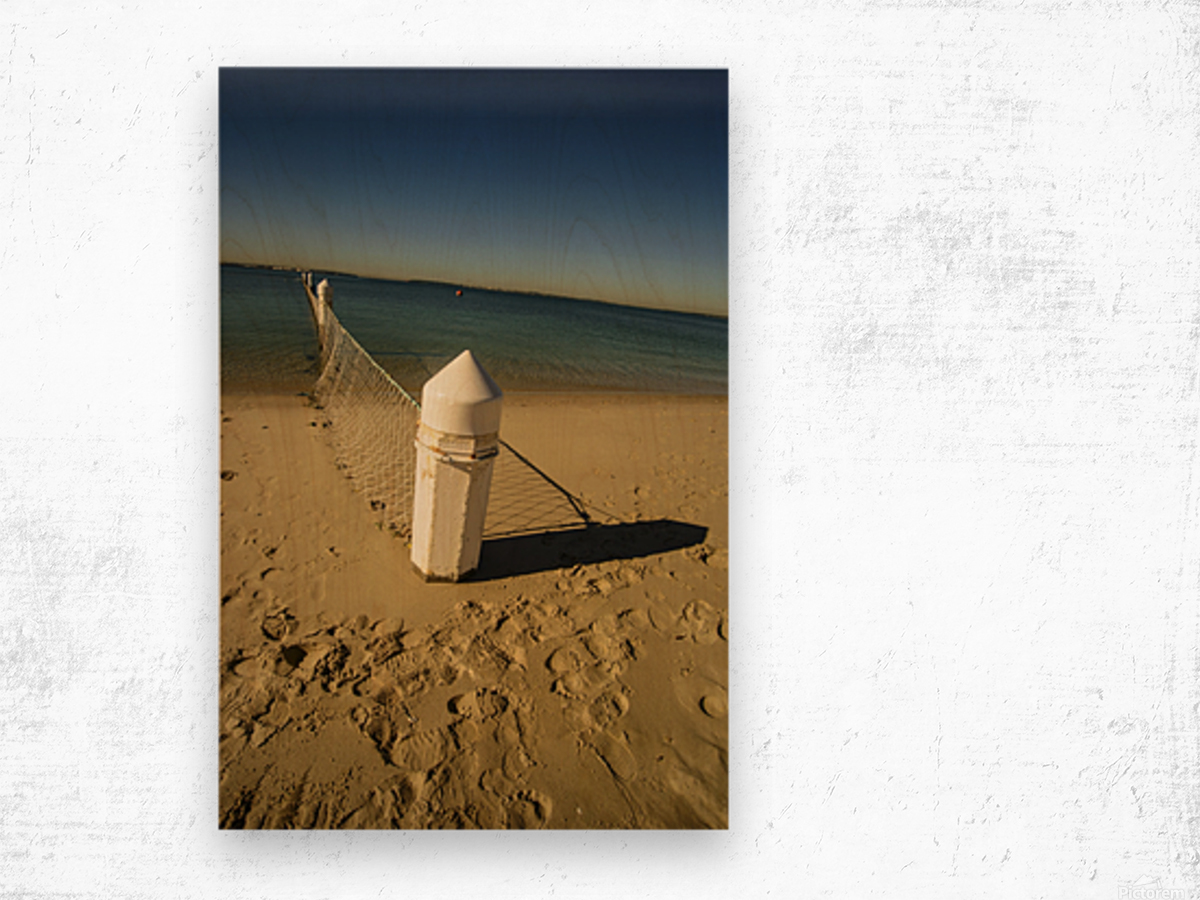 Shark Net Corner Post Perspective Brighton le Sands Australia. Wood print