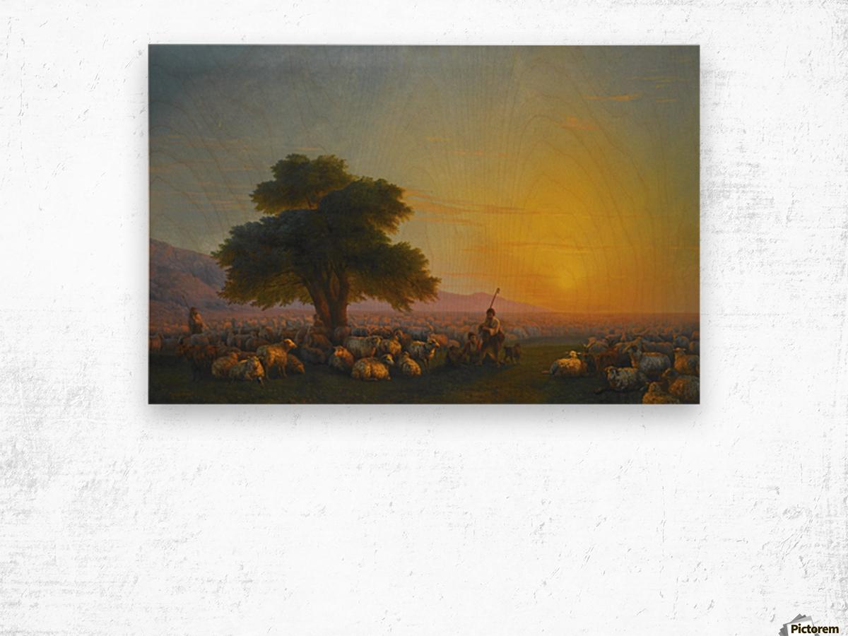 Sheeps in the sun Wood print