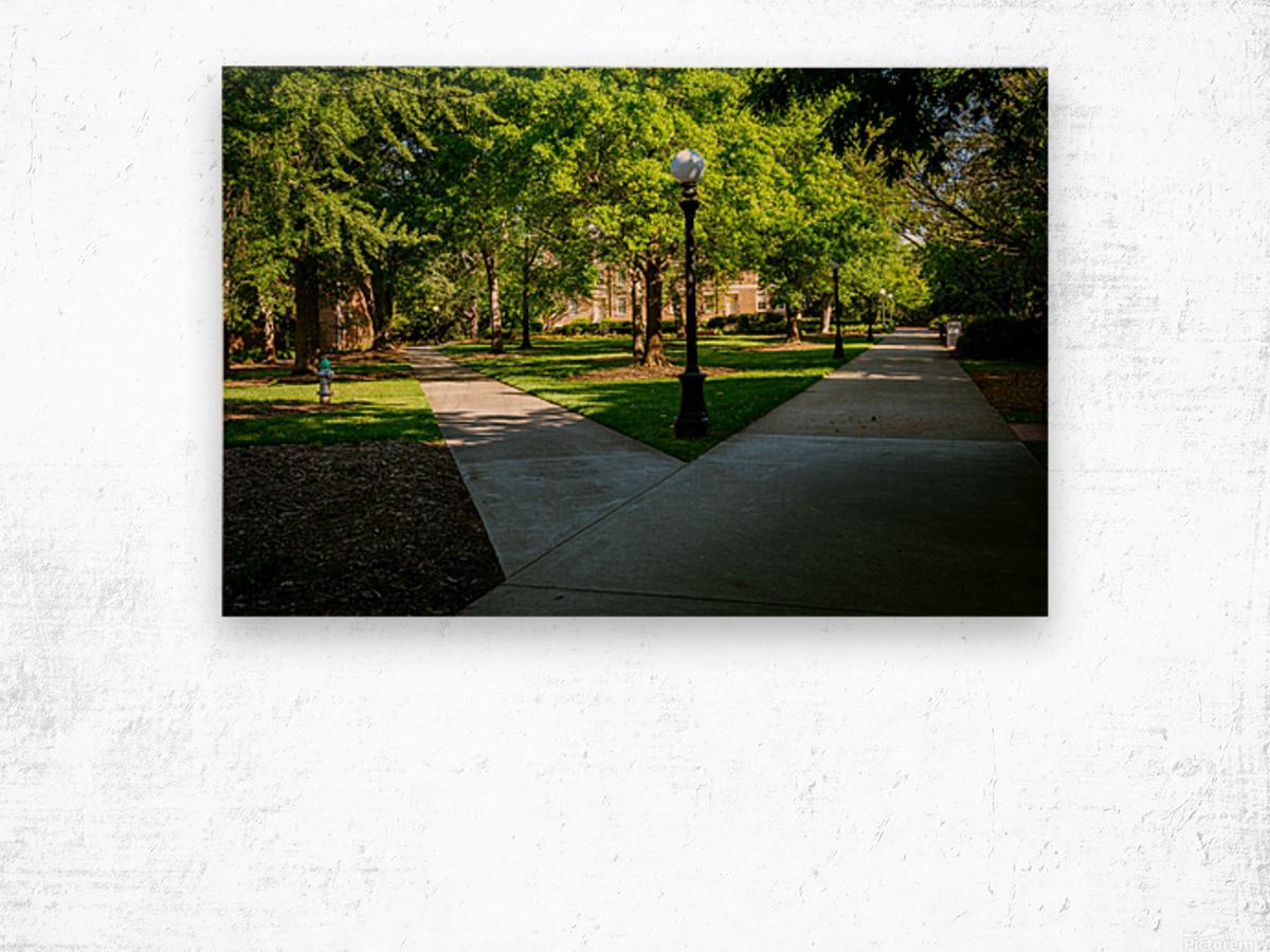 University of Georgia   Athens GA 06331 Wood print