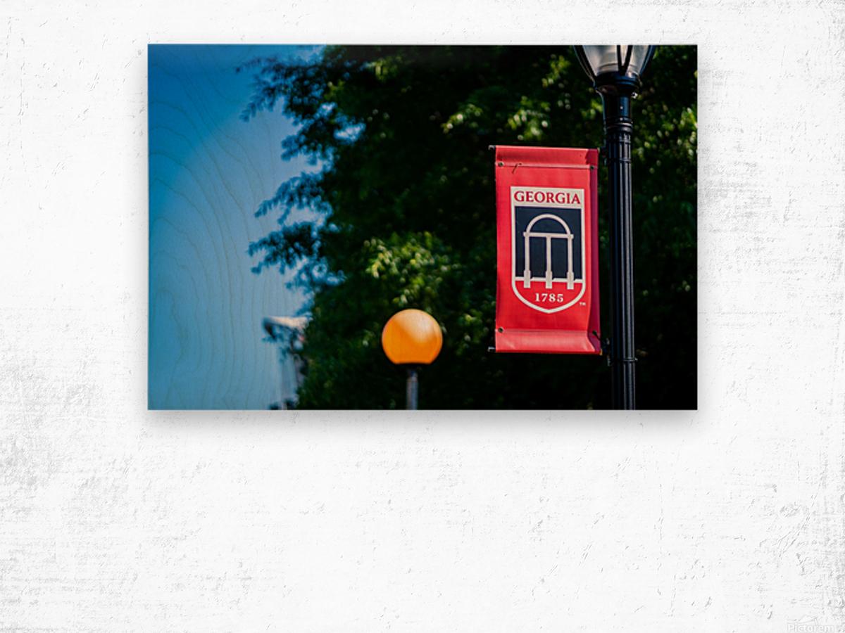 University of Georgia   Athens GA 07197 Wood print