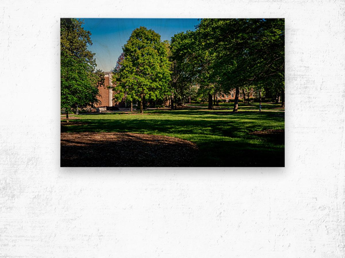 University of Georgia   Athens GA 06328 Wood print